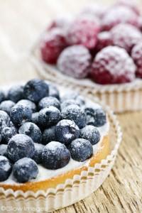 BlueberryRaspberrypie121712-2